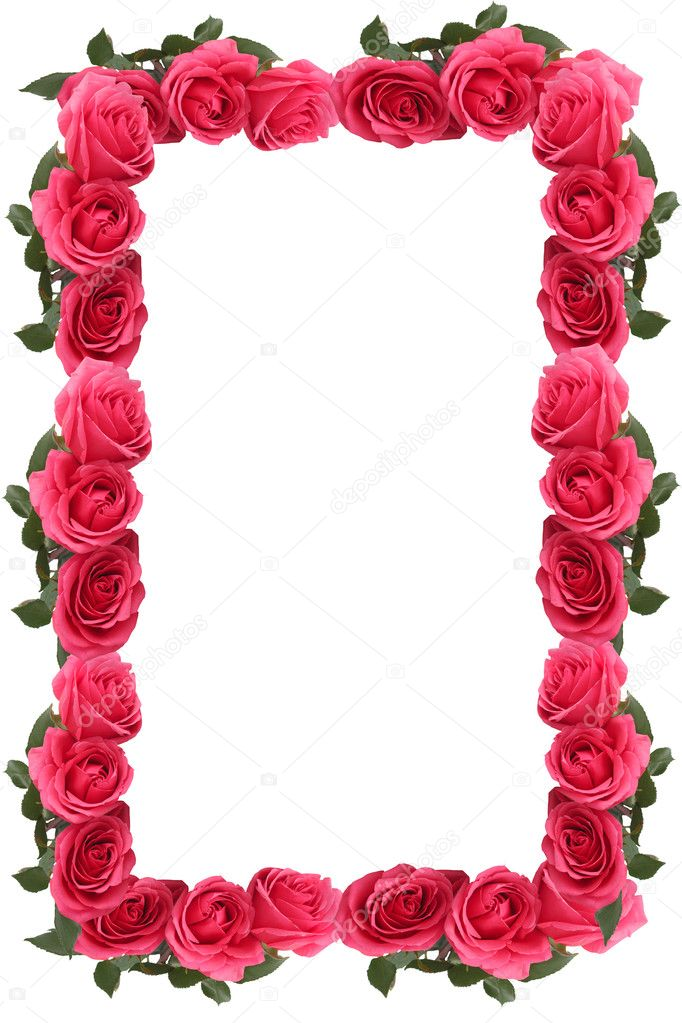 Pink rose border or frame — Stock Photo © gvictoria #3186370