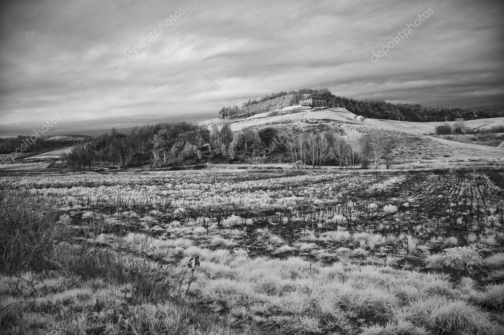 Tuscan Countryside by Infrared