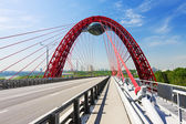 Moderní Zavěšený most
