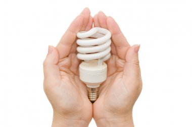 Energy saving light bulb in the palm