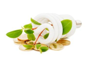 Energy saving lamp with green seedling