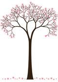 Photo Cherry blossom tree
