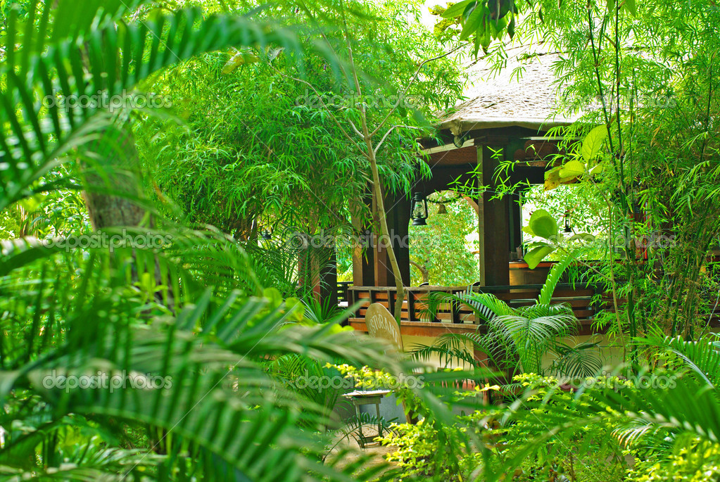 Veranda in the tropical garden
