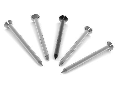 Five nails. 3d stock vector