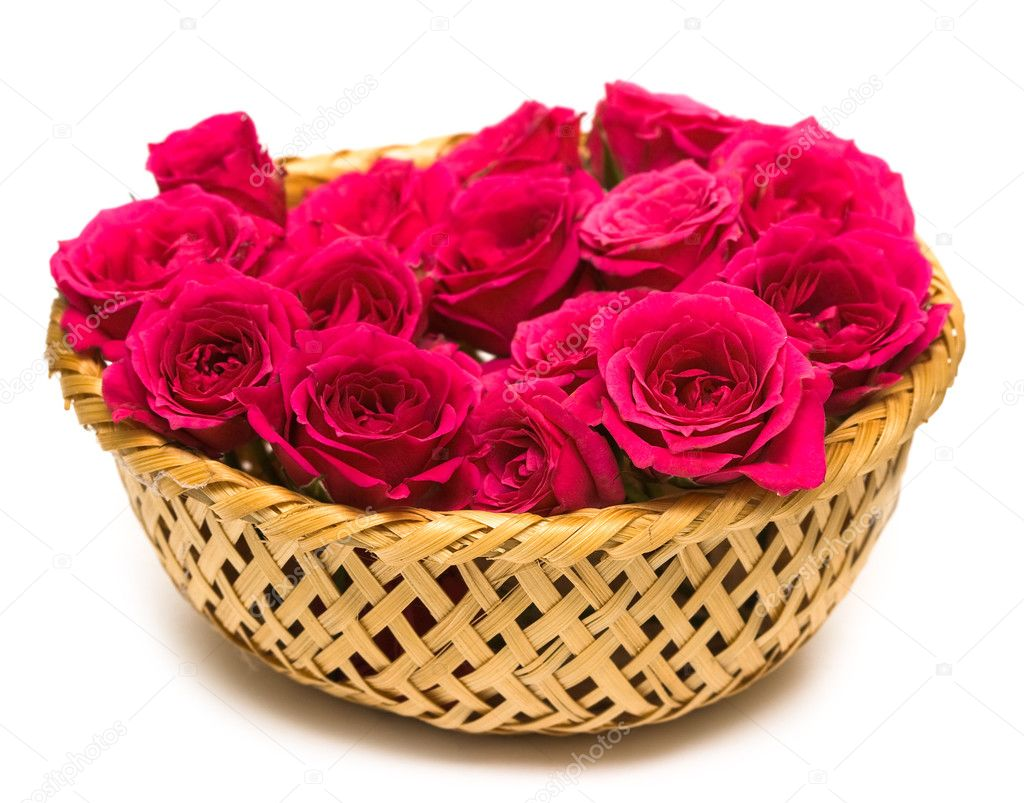 Magenta roses in basket