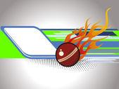 Vektorové ilustrace kriket zázemí