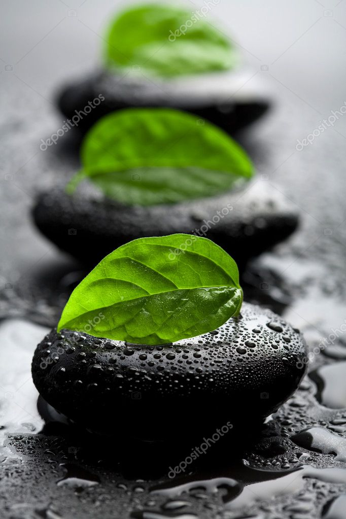 Zen stones and leaves with water drops
