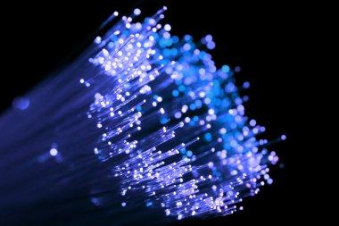 Blue shining fiber optic
