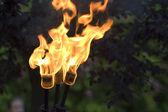 pochodeň oheň