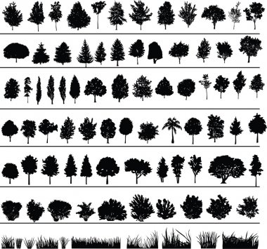 Set of silhouettes of trees, bushes and grass stock vector