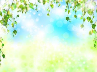 Bright summer