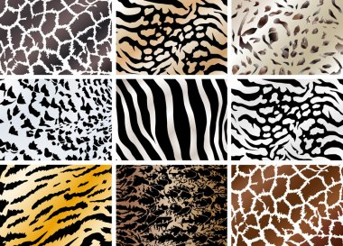 Set of animals skin backgrounds
