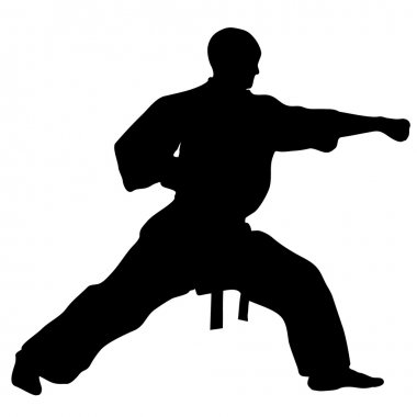 MARTIAL ARTS -KARATE PUNCH