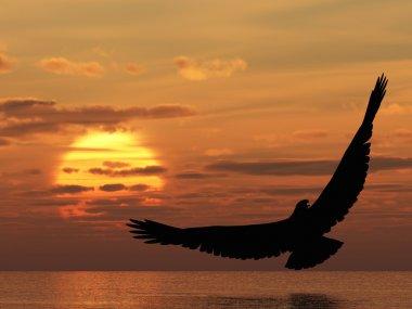 Eagle above ocean