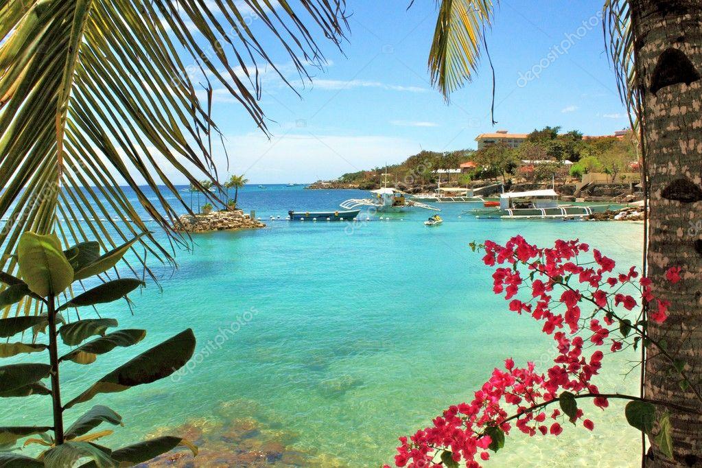 Summertime in Mactan Island Cebu