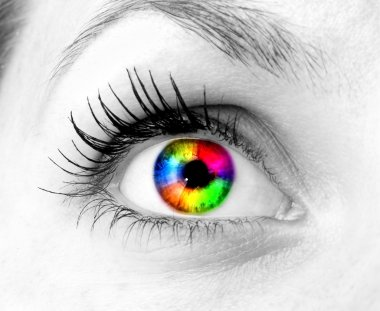 Colourful human eye of the girl stock vector