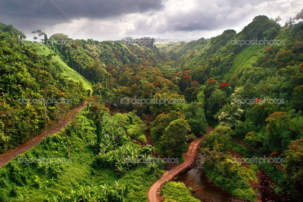 Landscape of Hawaii