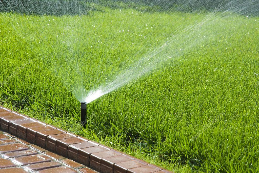 Sprinkler Der Automatische Bewasserung Stockfoto C Apetel 3912322