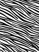 Photo Zebra background