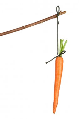 Stick with Carrot