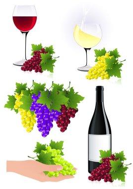 Vine element collection