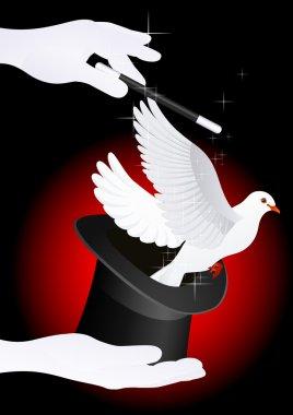 Magic dove