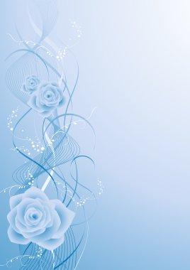 Blue rose bacground