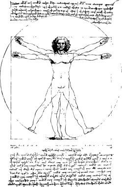Vector Vitruvian Man