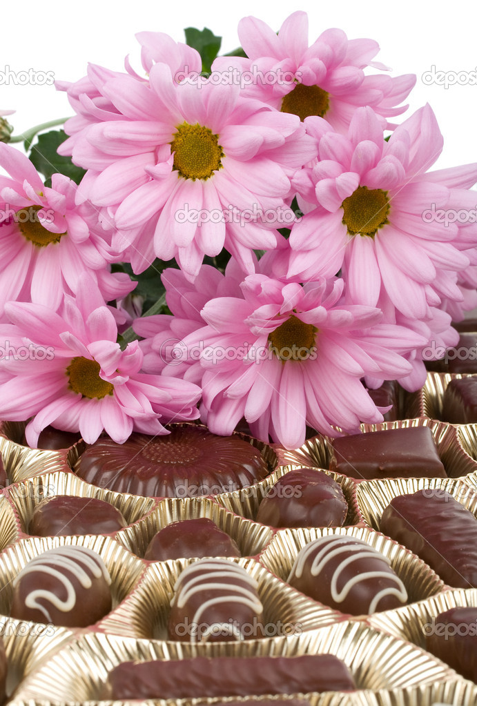 Set of chocolate and chrysanthemum