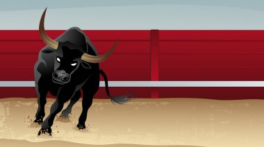 Bull on bullfight
