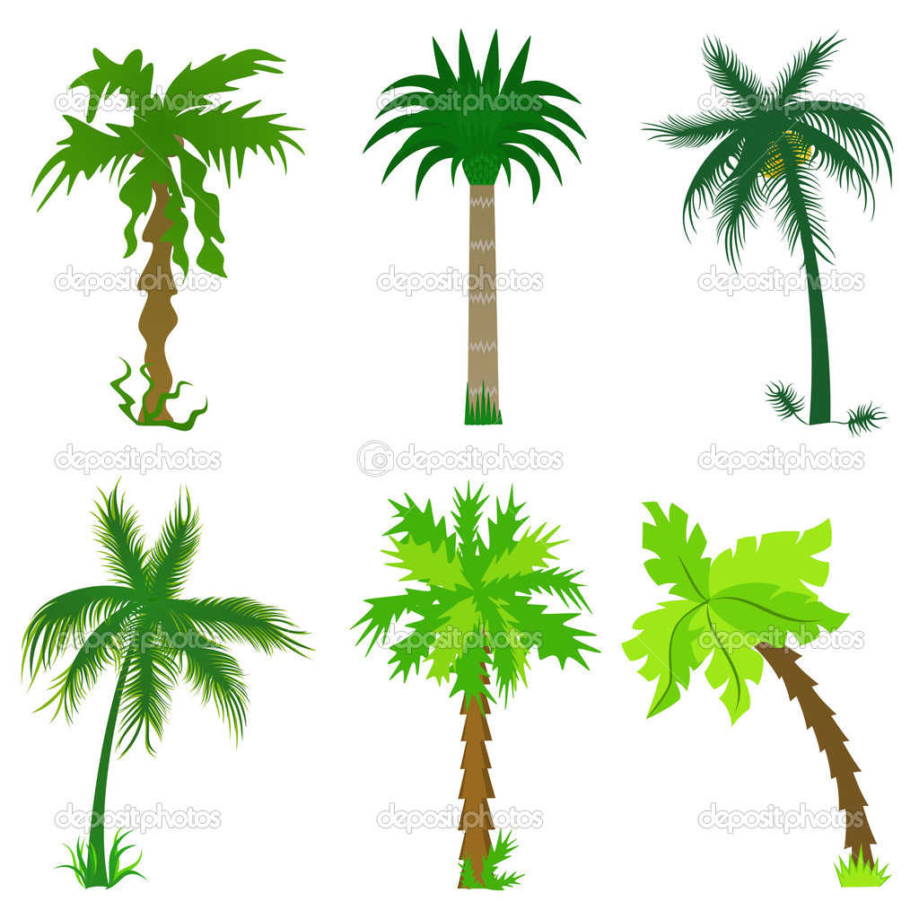 Set of various palms