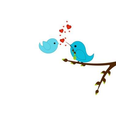 Birds of lovers