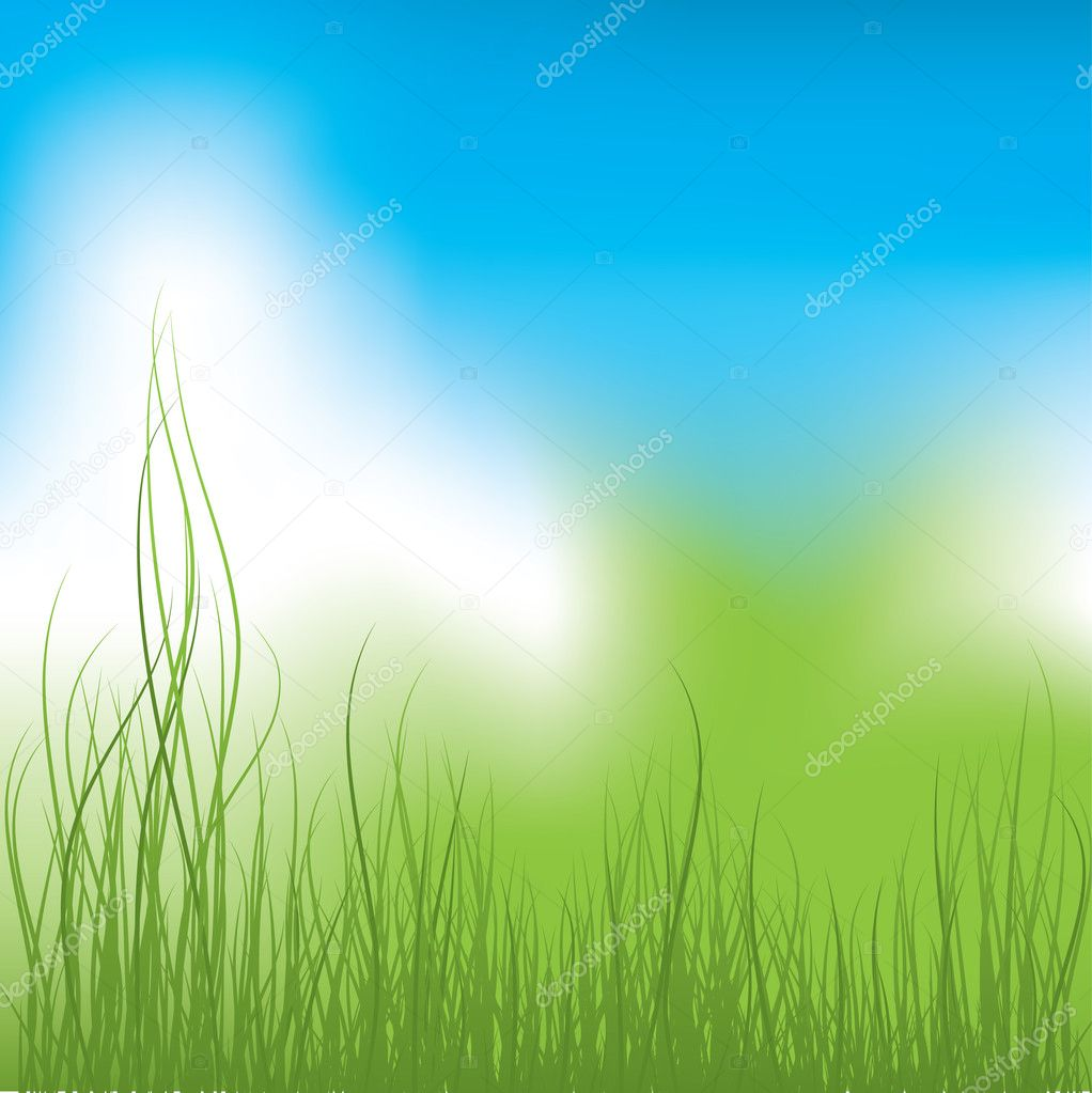 Green Grass and blue sky. Vector illustration