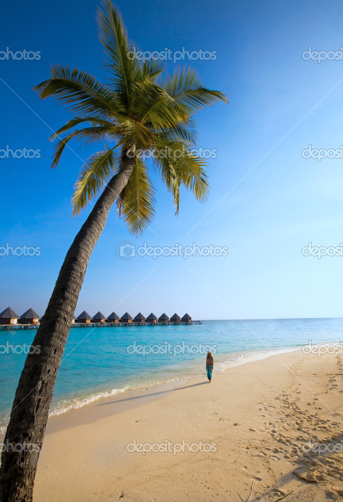 Palm tree on background of ocean and silhouette of girl on sand, maldives
