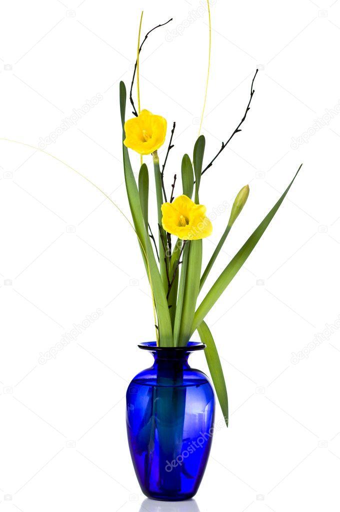 Daffodil In Vase Stock Photo Mirusiek 2816055