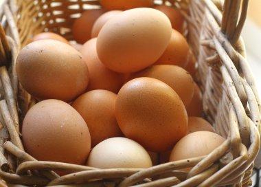 A closeup of a pile of brown eggs stock vector