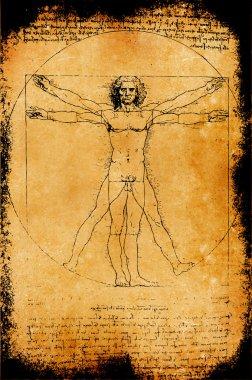 Photo of the Vitruvian Man