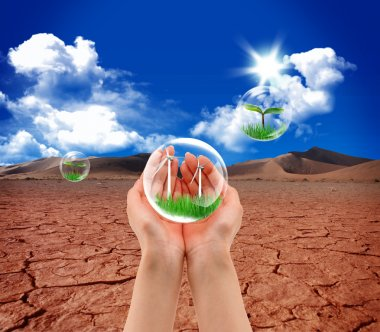 New life green grass in the water bubble in arid soil stock vector