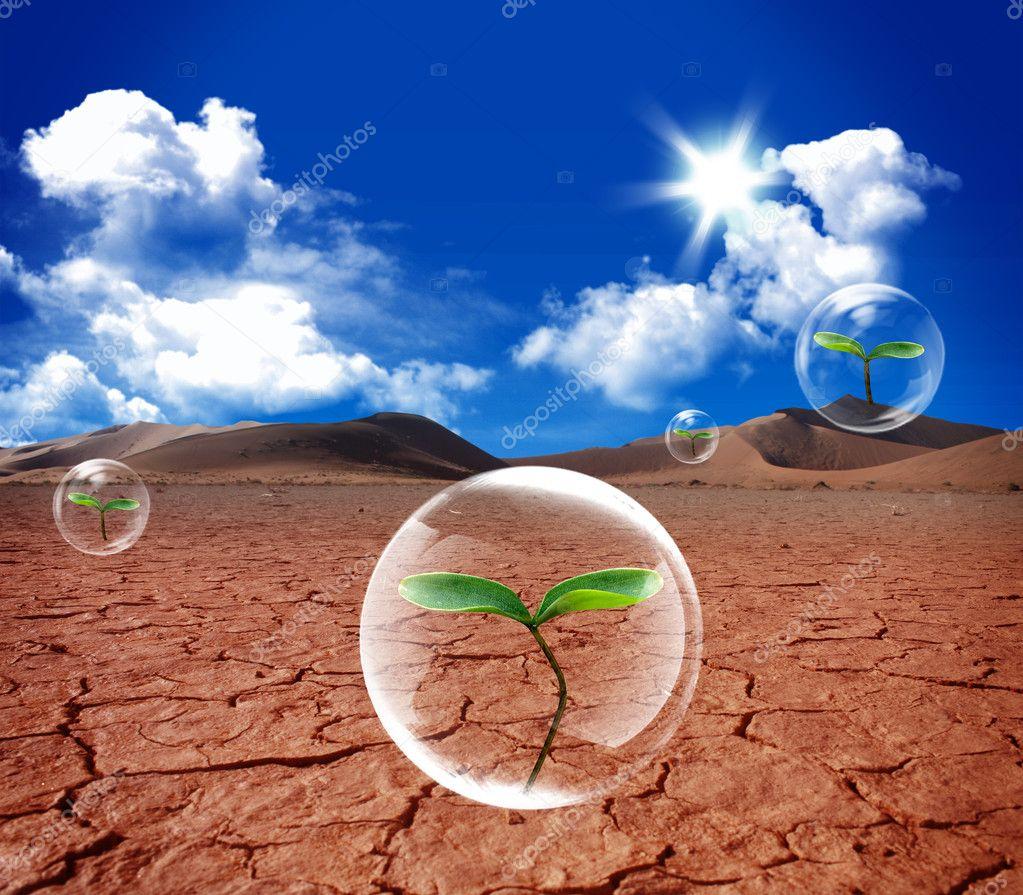 Water bubble in arid soil desert