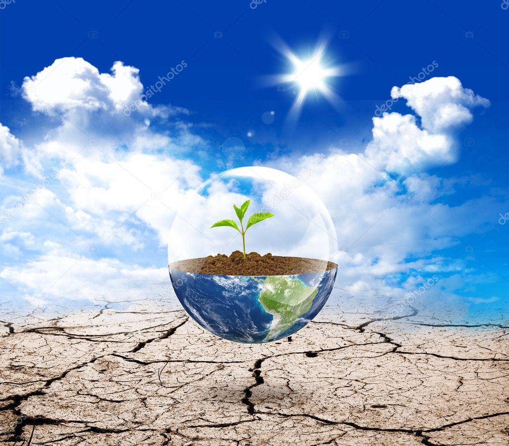 Earth green life in desert