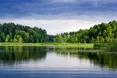 Fényképek tó és az erdő