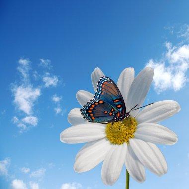 Springtime - conceptual photo stock vector