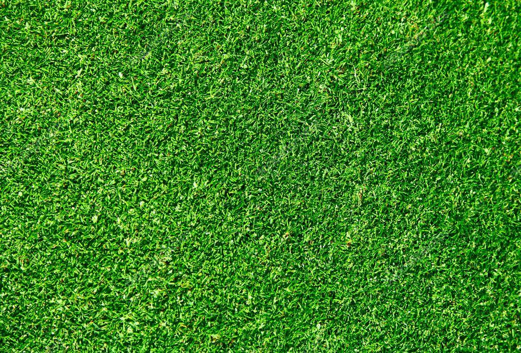 Grass background - golf field