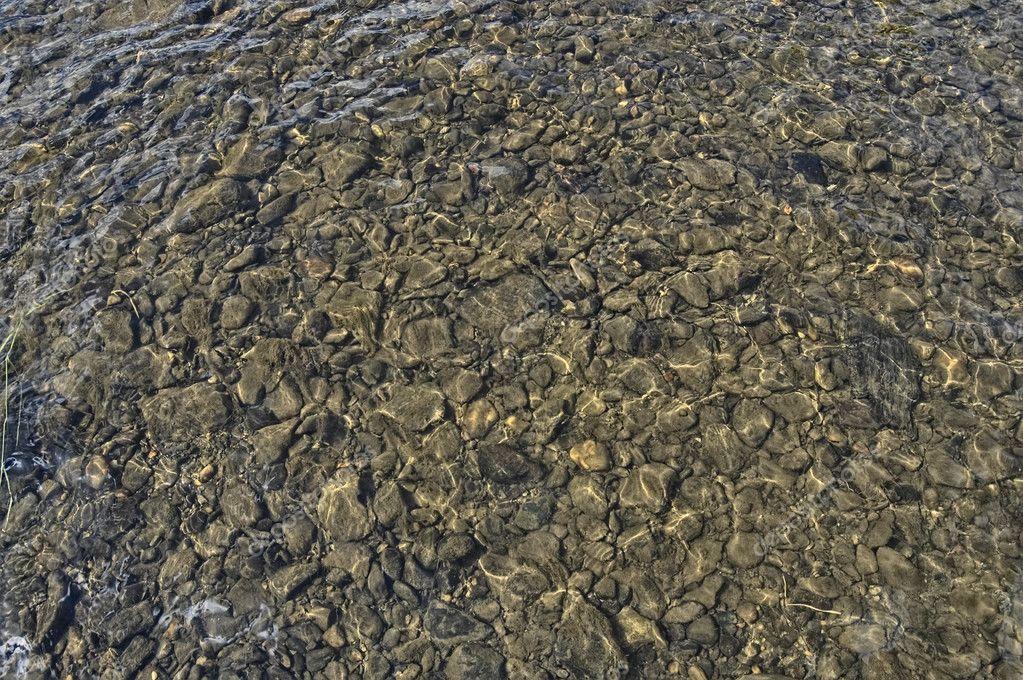 фото каменистого дна