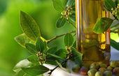 Fotografia bottiglia di olio di oliva e olive