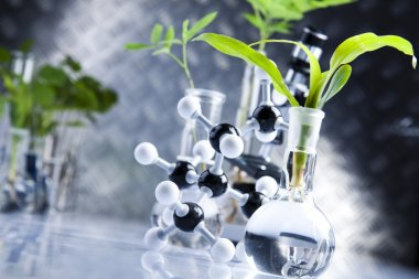 Laboratory glassware, Plant