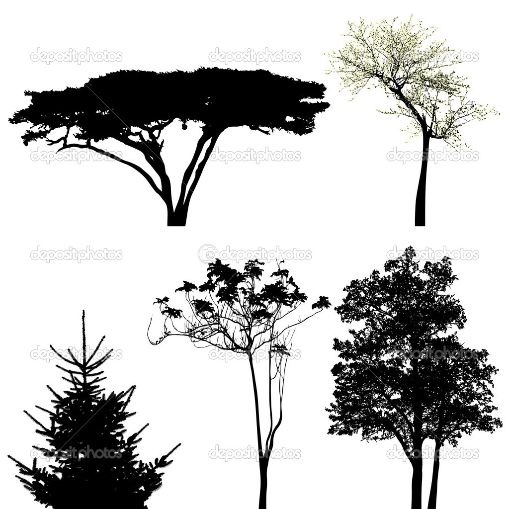 Trees - vector collection