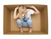 Fényképek nő egy cradboard dobozban