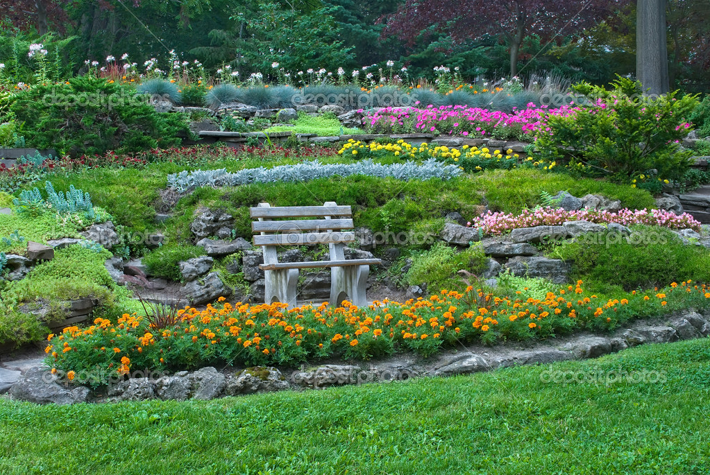 Wooden bench in summer garden with blooming flowers