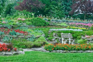 Garden with flowerbeds, decorative plants in a summer park